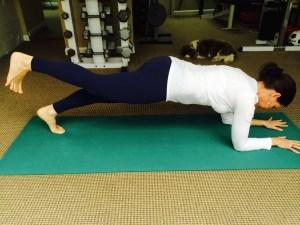 """""""Leg Lift In Forearm Plank"""""""