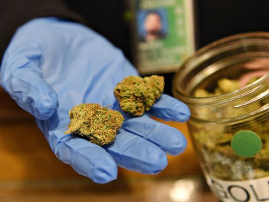 Colorado Schools Win Marijuana Taxes
