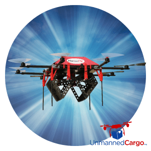 Picture of Workhorse's Horsefly Delivery Drone in the US