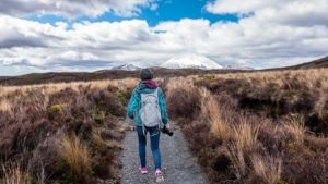 10 razones por las que las Working Holiday cambiaron mi vida