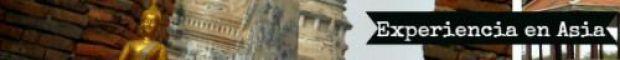 Ayutthaya ancient city fin