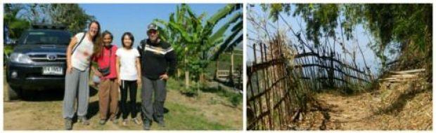 bamboonest