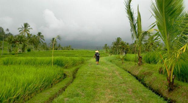 blog de viajes bali