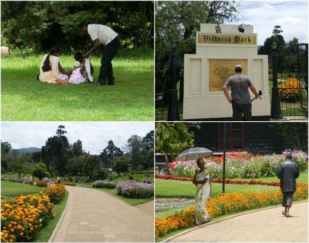 Parque Victoria Sri lanka