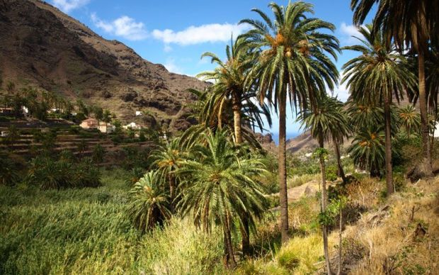 Foto: lagomera.travel