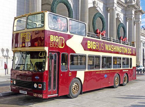 Así son los buses