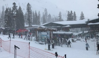 The very popular Alpenglow Backcountry Demo was held today...free demos? Yes!