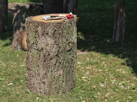 Holz 2014 1