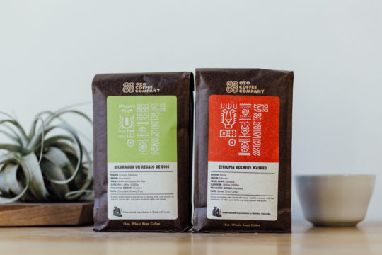 Ozo-Coffee-ethiopia-washed-nicaragua-cupping-plant