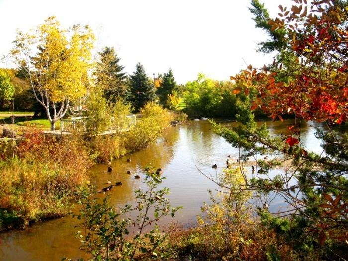 St John Canada in the fall