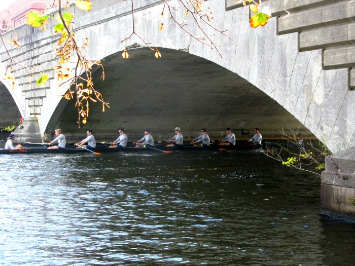 Boston Head of the Charles regatta