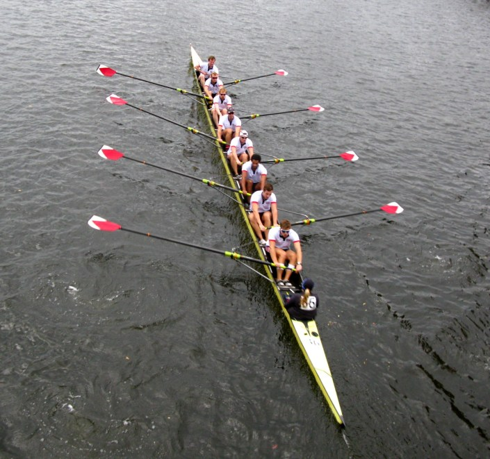 Harvard rowers on the Charles