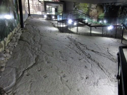 BT Footprints (800x600)