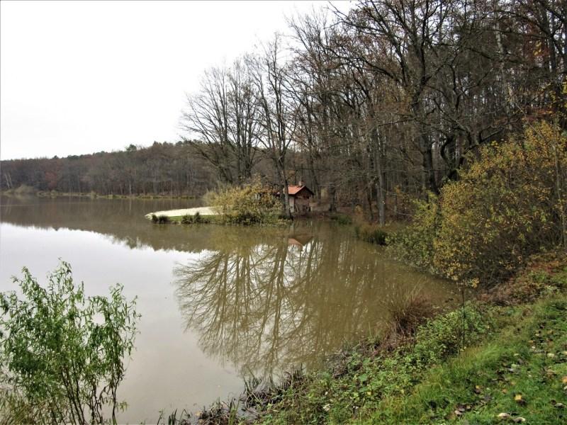 Bukovniško lake