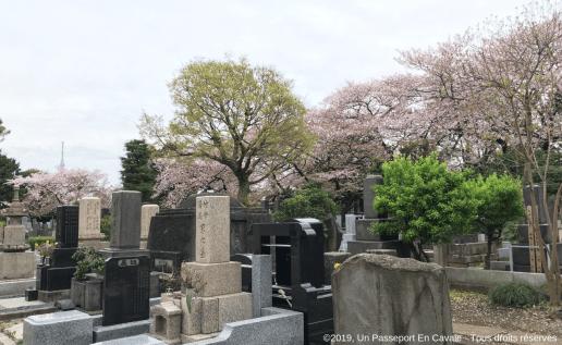 ©2019_Un Passeport_En_Cavale_Tokyo_Tous_droits_réservés_0013