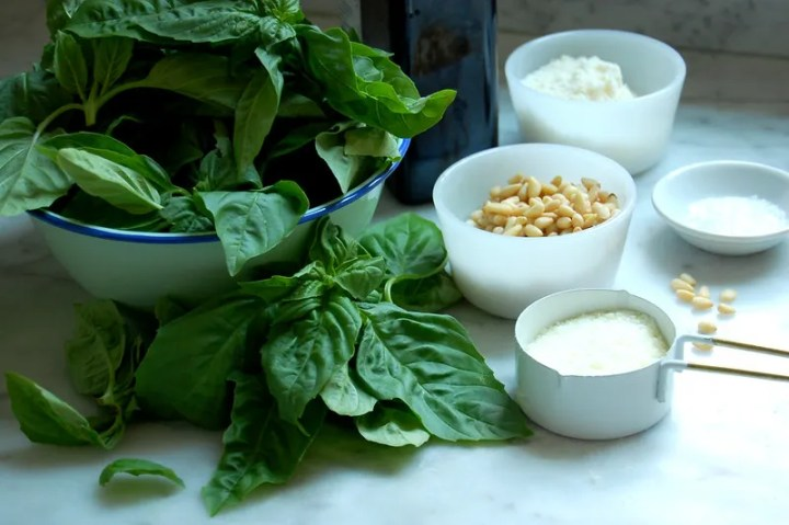 best pesto recipe ingredients basil pine nuts cheese garlic oil