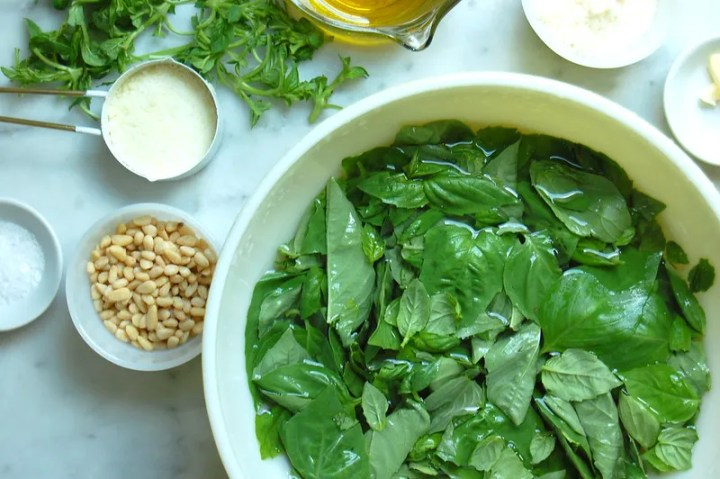 best pesto recipe ingredients basil pine nuts cheese garlic oil in bowl