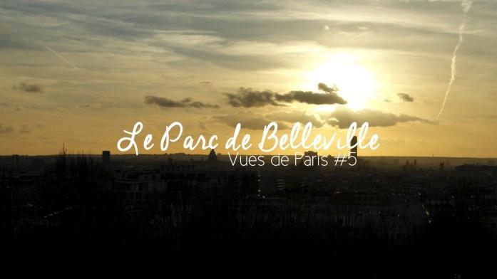 parc_belleville_vue_paris (4)