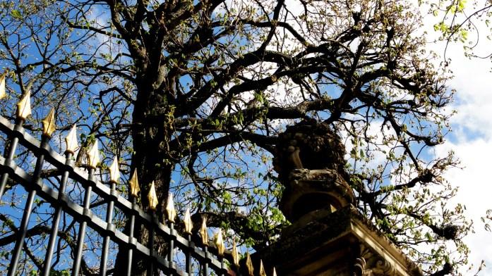 jardin_luxembourg_paris (2)