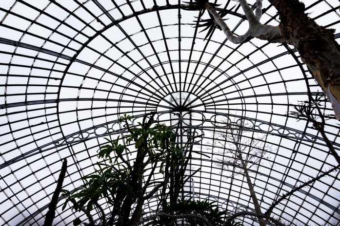Un weekend à Nantes - Le Jardin des Plantes - Serres