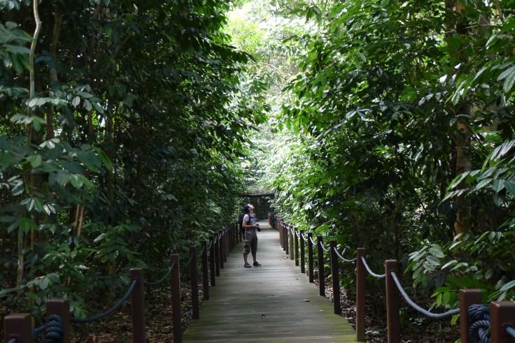Damien perdu dans les Singapore Botanic Gardens