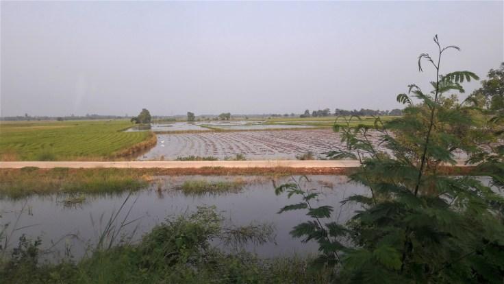 Sukhothai train