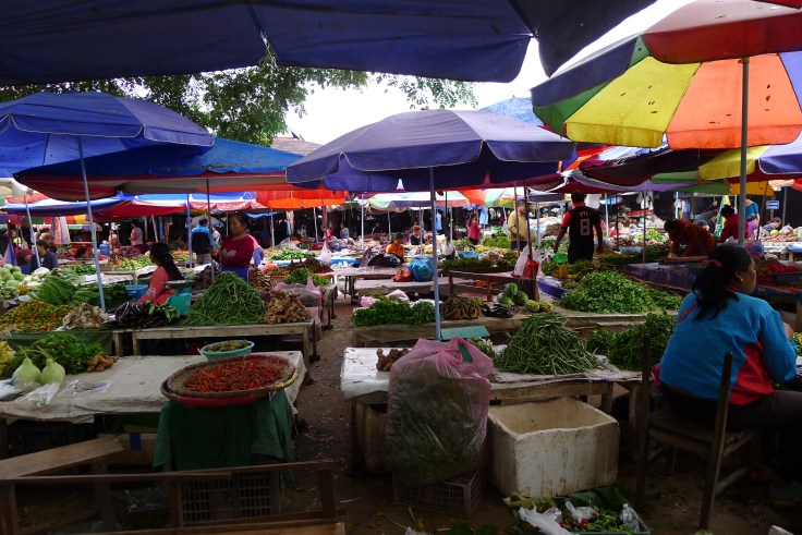 Laos Luang Namtha Market