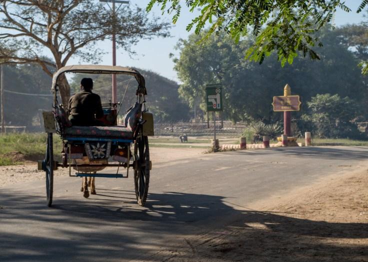 Bagan - Horse