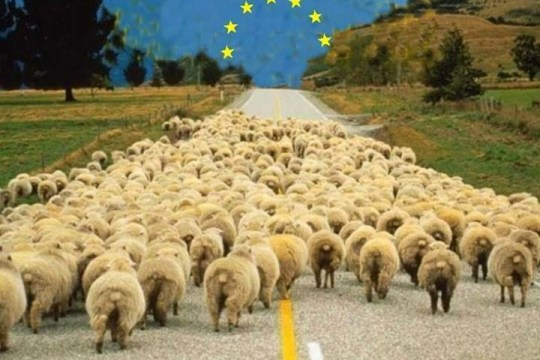 MoutonsUE