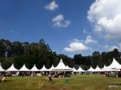 Marché de noël Nairobi, dans une clairière du Karura Forest