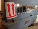Vue latérale cage de transport aérien pour chat