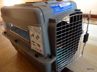 Cage de transport aérien pour chat Sky kennel