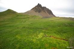Paysage islandais en été, Bakkagerdi