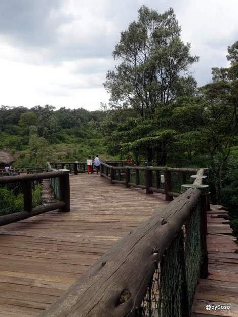 passerelle-safari-boardwalk-nairobi