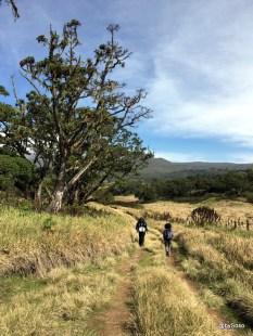 premiers-kilometres-chogoria-route