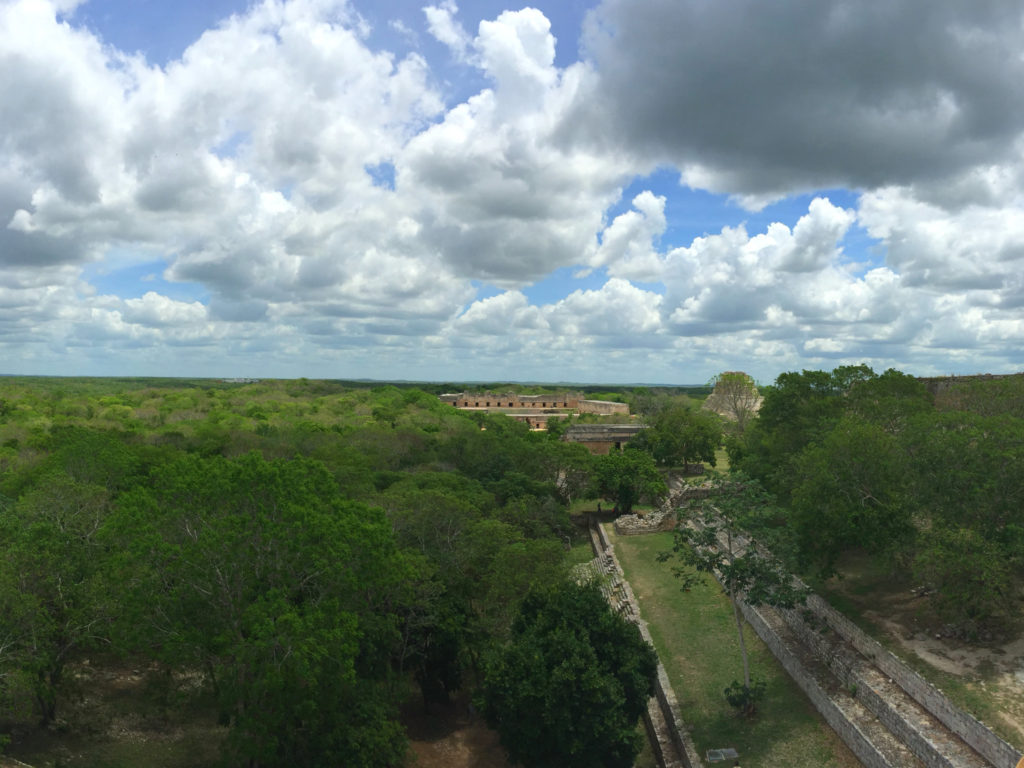 The Mayan temple at Uxmal from above (Photo Credit: Paige Conner Totaro)