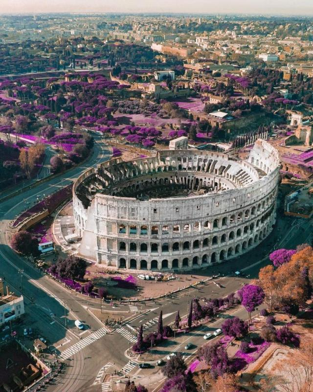 aerial view of the Colosseum_study in italy