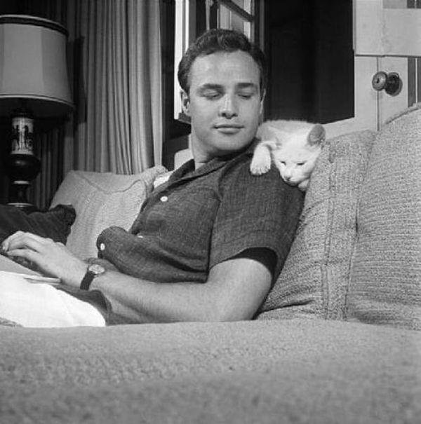 Marlon Brando with the cat