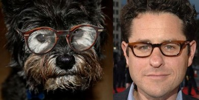 Celebrity Dogs 5