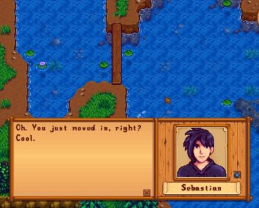 Ranking The Top Five Bachelors In Stardew Valley