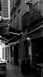 Calle Flores