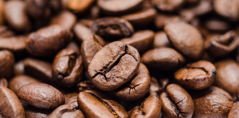 Special Beans for Special Coffee