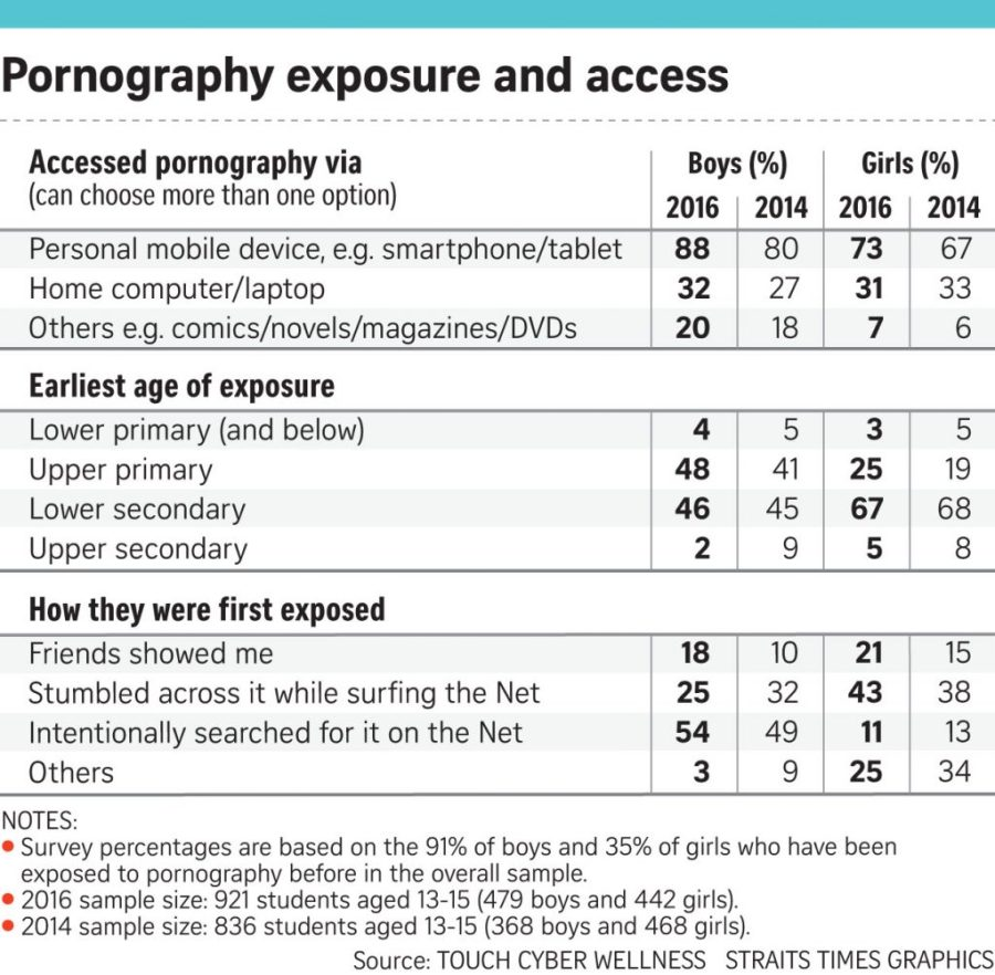 160629 Survey on pornography