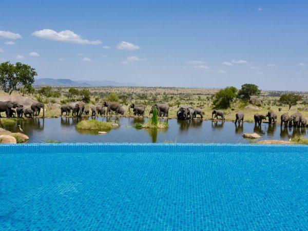 01-Four-Seasons-Safari-Lodge-Serengeti-cr-Paul-Rubio