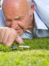cuttinggrass