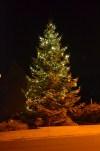 der abendliche Weihnachtsbaum