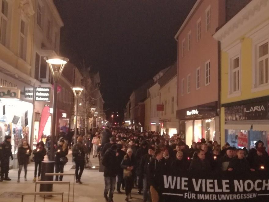 Image result for demo wiener neustadt die stimme