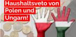 Nach EU-Erpressung: AfD unterstützt Haushaltsveto von Polen und Ungarn
