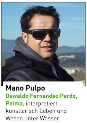 Oswaldo Fernandez Pardo, Palma
