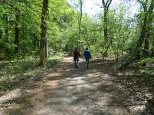 Foto von Spaziergängern im Wald